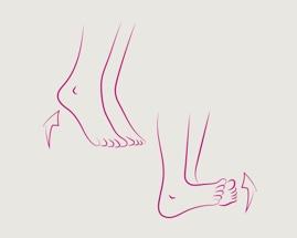 Иллюстрация перекатывания на пятках, показывающая упражнение 1 гимнастики для вен